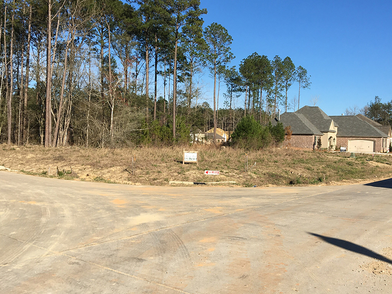 New Home Lot Available in Bedico Creek Preserve
